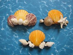 Seashell Hair Clips  Shell Hair Barrettes  by TheSleepySeahorse