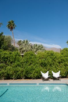 Pool //Design Inspiration From a Palm Springs Desert Chic Boutique Hotel, The Amado — House Tour Spring Architecture, Desert Environment, Palm Springs Hotels, Desert Design, Tourist Trap, Cheap Travel, Pool Designs, Travel Guides, Travel Tips
