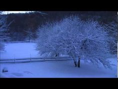 The Silence of Snow - Linda Eder