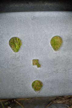 Street Art - Unintentional art in the urban open space - 501 - Pareidolia