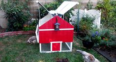 Painted Chicken Coops for Sale: Red, Yellow | The Smart Chicken Coop
