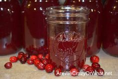 How To Make And Can Cranberry Juice~AreWeCrazyOrWhat.net