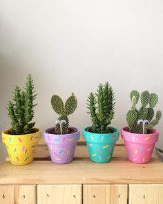 Perk up the décor of your house with varied types of embellished flower pots. Explore the enticing DIY flower pots ideas here for a striking effect. Painted Plant Pots, Painted Flower Pots, Decorated Flower Pots, Deco Cactus, Cactus Flower, Diy Flowers, Colorful Flowers, Potted Flowers, Flower Pot Crafts