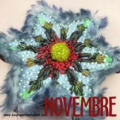Etoile du mois de novembre