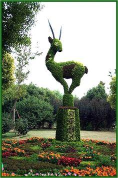 Топиари: топиари-животные, топиари-люди, топиари-насекомые : www.ceramica-online.kiev.ua