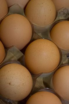 The next time you boil a dozen eggs, save the water and pour it on your garden and plants. The water becomes enriched with calcium when the eggs are cooked.