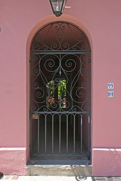 Looking through the gate