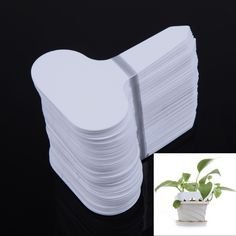 100pcs/set T-type Plastic Nursery Garden Plant Label Flower Thick Tag Mark White White for Garden Accessories