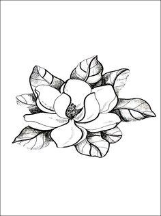 Magnolia Tree Drawing Ms magnolia coloring page jpg Colouring Pages, Adult Coloring Pages, Coloring Books, Flower Images, Flower Art, Magnolia Tattoo, Magnolia Flower, Pattern Illustration, Digi Stamps