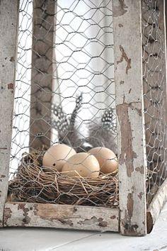 den gamla skolan: Ägg-gömma