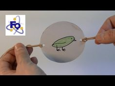 El taumatropo y las ilusiones ópticas - YouTube Stop Motion, Camping Activities, Activities For Kids, Fun Crafts, Crafts For Kids, Kids Workshop, 6th Grade Art, Life Humor, Teaching Art