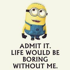 30 Funny Minion Quotes More