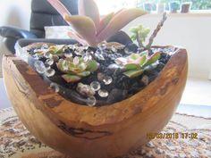 Silver Birch Wooden Bowl