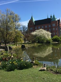 Kungsparken Malmö The city I love Sweden