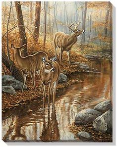 Abandoned Farmstead Whitetail Deer Wrapped Canvas Art by Rosemary Millette : Wild Wings