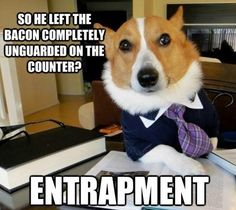 But if they hold the bacon over your nose, just out of reach, that is intentionally infliction of sever emotional distress! www.costnerlawfirm.com