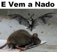 Cantinho do poeta Feliz: E Vem A Nado (Feat Dranois 7)