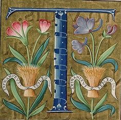 Missel Langue latin Nomenclature Liturgie Datation avant 1585 Avignon, BM, 0146 Illuminated Letters, Illuminated Manuscript, Bible Art, Book Art, Letter Ornaments, Hand Drawn Type, Calligraphy Alphabet, T Art, Letter Art