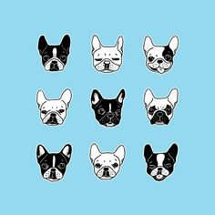 10 Awesome Dog Illustrations on Dribbble –Discover on disruptivedog.com