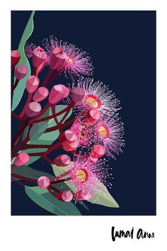 Flowering gum on navy background Limited Edition Print Flowering Gum limited edition giclee art print by Australian artist Lamai Anne. What a wonderful way of bringing the Australian outdoors and a real pop of. Art And Illustration, Flower Illustrations, Art Floral, Floral Wall, Floral Artwork, Australian Native Flowers, Australian Artists, Pop Art, Art Et Nature