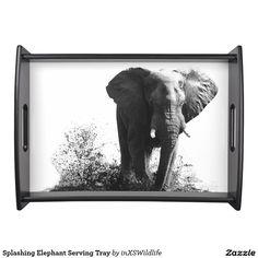 Shop Splashing Elephant Serving Tray created by inXSWildlife. Natural Wood Finish, African Safari, Wildlife Photography, Print Design, Elephant, Tray, Entertaining, Dining, Unique