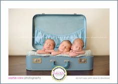 san diego newborn photography for baby triplets twins multiple baby photographer maternity newborns san diego prenatal multiples