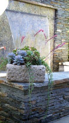 Roger's Garden Landscape: Succulent Container