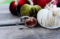 Little brown velvet pumpkin love.  #fall #decor LoveFeast Shop  shop.lovefeasttable.com