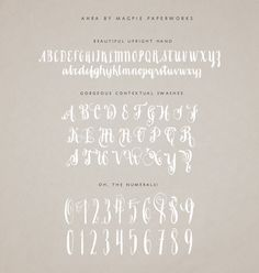 Great new modern calligraphy font to add to your collection Ahra by Magpie Paperworks!