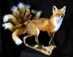 Kitsuné is a kind of fox in Japan. They are considered to be mythological creatures.