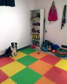 Top 60 Best Dog Room Ideas - Canine Space Designs Informations About Top 60 Best Dog Room Ideas - Ca Dog Bedroom, Room Ideas Bedroom, Animal Room, Modern Playroom, Ikea Playroom, Puppy Room, Dog Kennel Cover, Minecraft Room, Dog House Plans