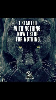 Must Read Truly Inspiring Life Quotes About The Essence Of Life Quotes) - Awed! Lion Quotes, Wolf Quotes, Wisdom Quotes, True Quotes, Motivational Quotes, Inspirational Quotes, Quotes Quotes, Reality Quotes, Success Quotes