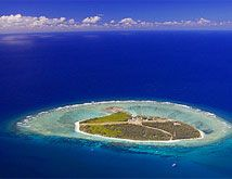 Lady Elliot Island-one of the most amazing places I've been