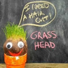Silly Grass Heads | AllFreeKidsCrafts.com