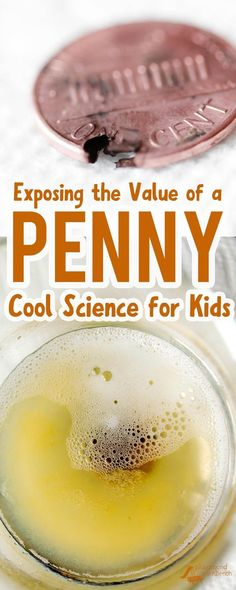 What is a penny made of? Is is solid copper? Expose the value and the insides of a penny with this simple, cool science experiment for kids - using only common household ingredients. | Science for kids | STEM | STEAM | Preschool | Kids Activities