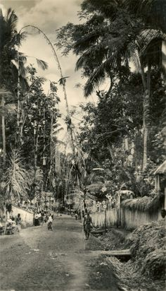 Balinese street with penjor Java, Temple Bali, Bamboo Poles, Old Photography, The Visitors, Balinese, Vintage Pictures, Old Photos, Illusions