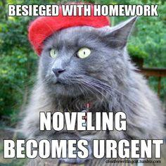 I've got 11 essays I need to do [°_°]