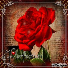 Glitter Blingee Roses | Download image Red Roses Hearts Blingee Glitter PC…