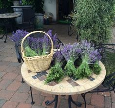 Lavender bouquets for her wedding! #wedding #bouquets  #hoodriverlavender #organic #lavenderfarm #lavender  #garden #hoodriver #traveloregon #pnw #farm #aromatherapy #flowers