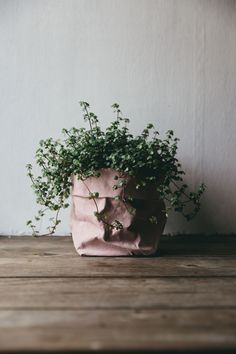 Rose Pink Uashmama eco-friendly store bags.