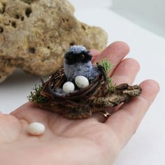 OOAK Realistic Baby Owl with Nest and Eggs by FairiesMiniatures