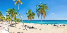 Folks flock to Fort Lauderdale for its 25 miles of beaches and year-round sunshine. This resort is in the middle of a stretch of Route that has the beach. Beach Hotels, Beach Resorts, Cheap Domestic Flights, Fort Lauderdale Beach, Florida Vacation, Travel Deals, Places To Travel, Around The Worlds, Flight Deals