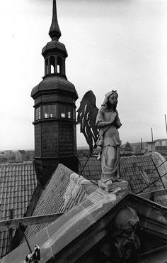 Nad dachami Gdańska, niecodzienna wystawa; dachy gdańska, maciej kostun, zdjęcia gdańska, zdjęcia Gdańsk, Gdynia, Sopot