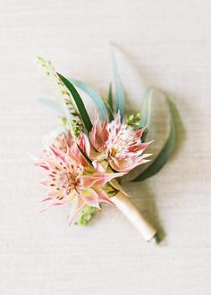Groomsmen: A cluster of blushing bride protea with the accent of green berzillia berries, and burgundy astilbe, with the greenery of Italian ruscus