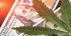 The Arcview Group has partnered with BDS Analytics to share their projections for legal cannabis' future economic impact. In 2016, the industry's total annual output was $12 billion; Arcvi