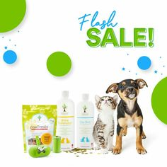 Cat Grooming, Dog Training Tips, New Puppy, Pet Care, Dog Cat, Puppies, Pure Products, Pets, Bottle