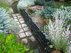 Wonderful Wine Bottle Garden Wall Stacked Wine Bottles Holding Up A Raised Flower Bed G A R Wine Bottle Garden, Wine Bottle Wall, Wine Bottles, Empty Bottles, Glass Garden, Glass Bottles, Raised Flower Beds, Raised Garden Beds, Raised Beds