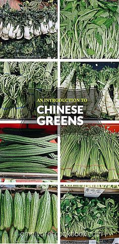 chinese recipes An Introduction to Chinese Greens including a list of vegetables with photos and names to help with shopping in an Asian market, links to recipes using the veggies, and how to prep and store them. List Of Vegetables, Chinese Vegetables, Veggies, Cooking Vegetables, Air Fryer Recipes, Chinese Greens, Asian Market, Asian Cooking, Cooking Tips