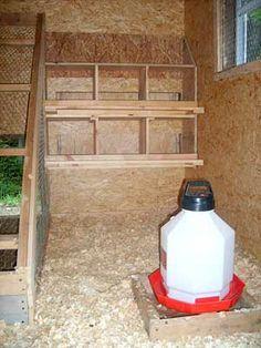 1000 images about chicken coop on pinterest chicken for Chicken coop interior designs