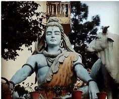 Shiva will take your scars and turn them into stars.